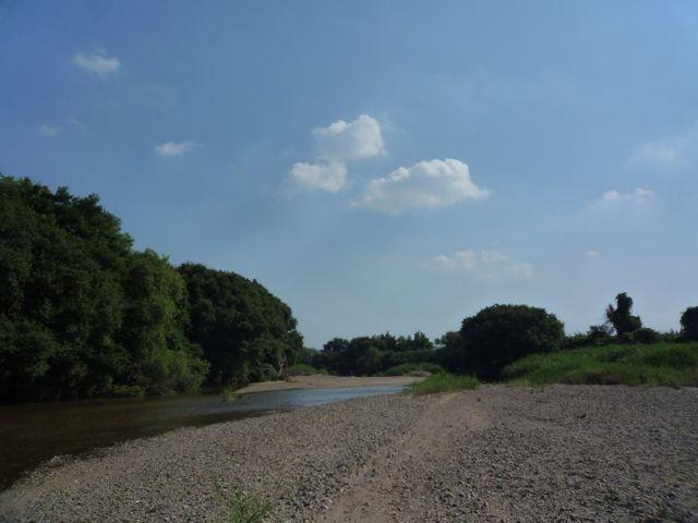 緩やかな川