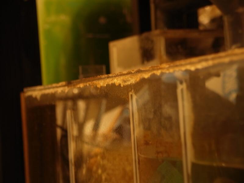 液ダレが固着した水槽