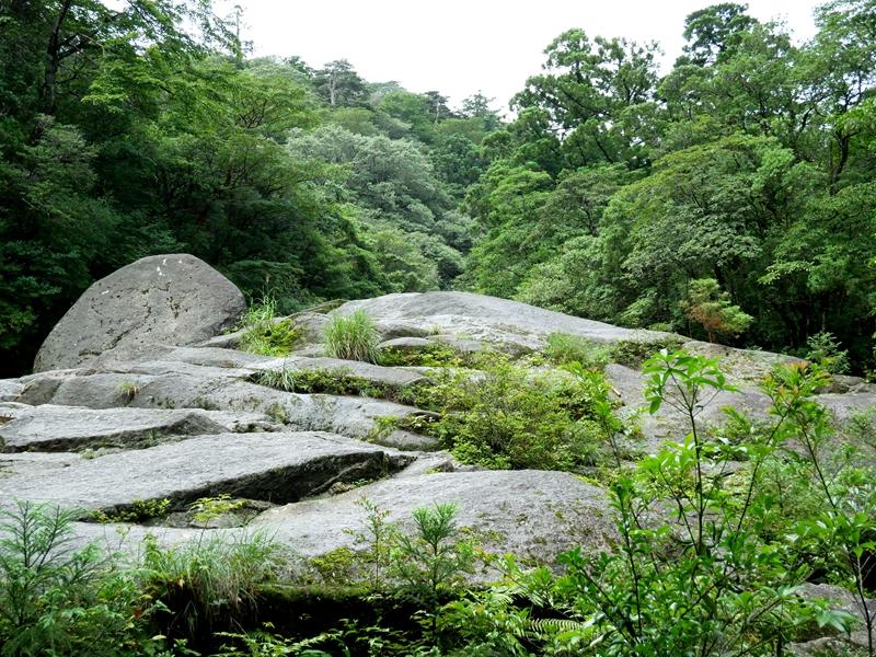 白谷雲水峡の序盤の岩肌の斜面