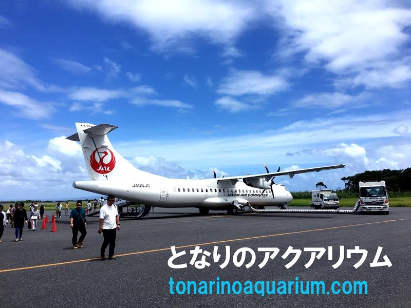 屋久島空港とJALのプロペラ機