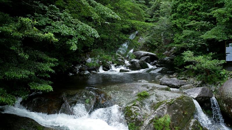 白谷雲水峡の入り口の川