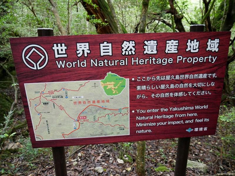 屋久島ここから世界自然遺産地域