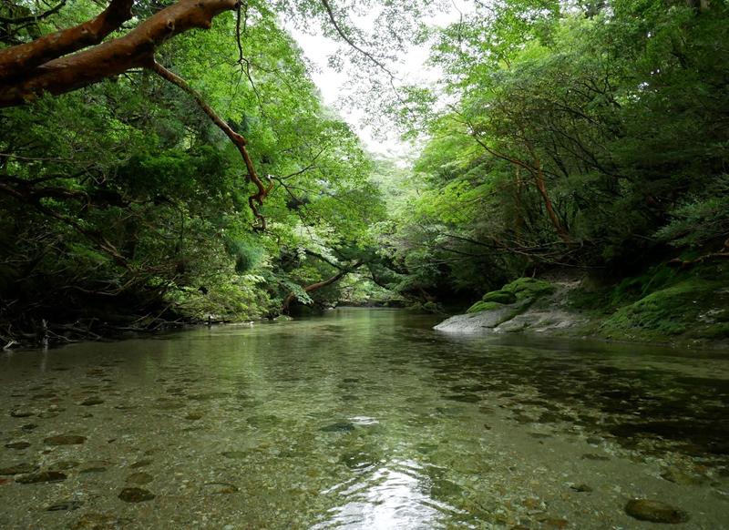屋久島の淀川