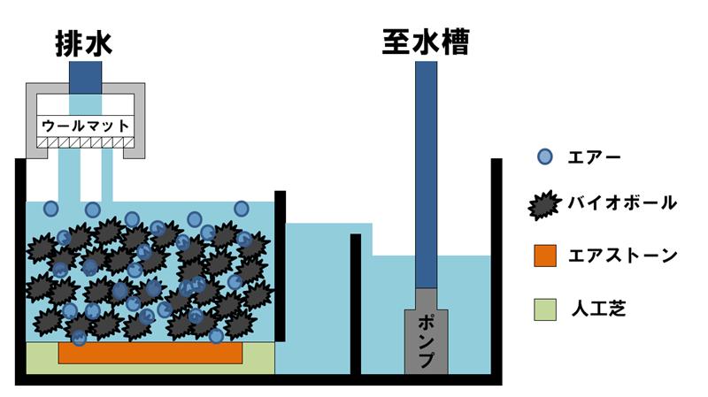 シンプルなオーバーフロー水槽の濾過槽のイメージ