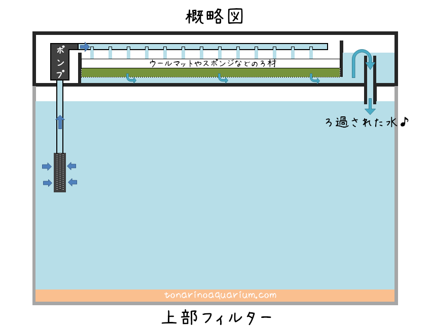 上部フィルターの構造イメージ概略図