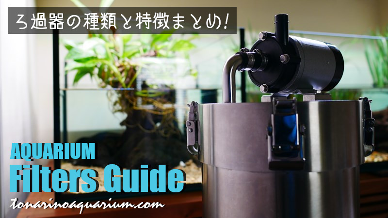 水槽用フィルターの種類と特徴まとめ